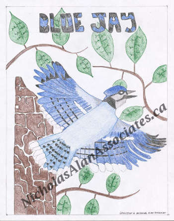 Blue Jay and Tree Trunk
